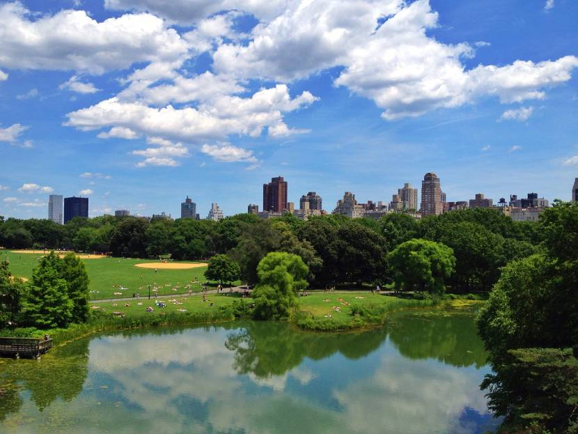 Must-see Places in New York -  Central Park