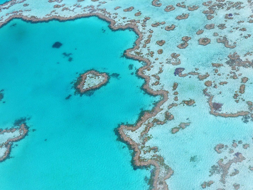 7 Best Places to Visit in Australia - Great Barrier Reef