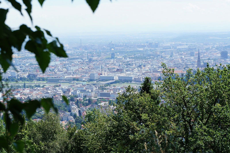 Explore Linz: Panoramic View
