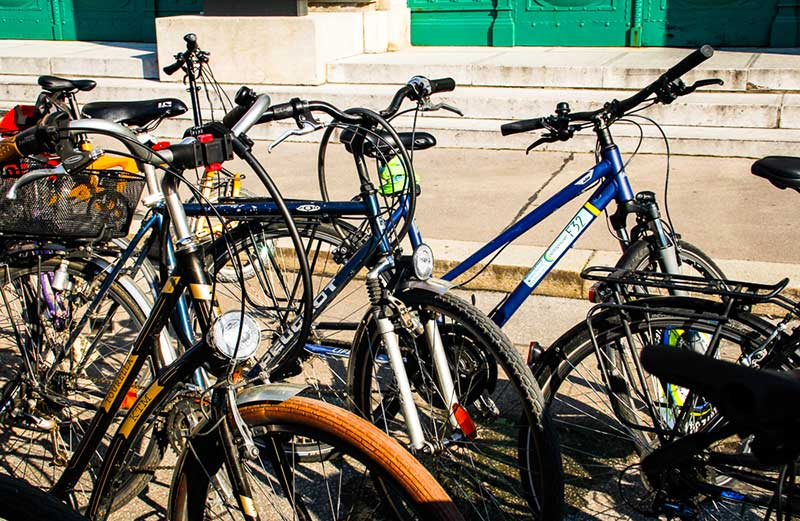 Learn About Vienna's Art & Culture, bikes